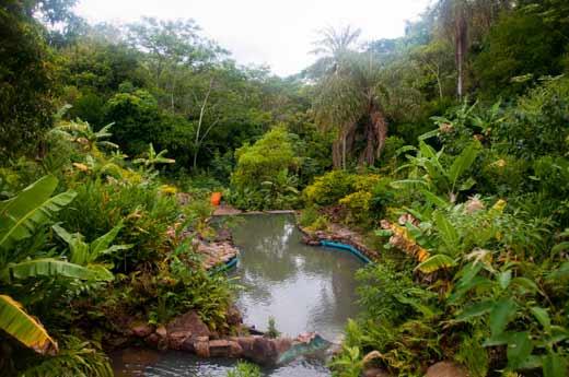 bazen prirodni