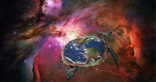kornjaca zemlja
